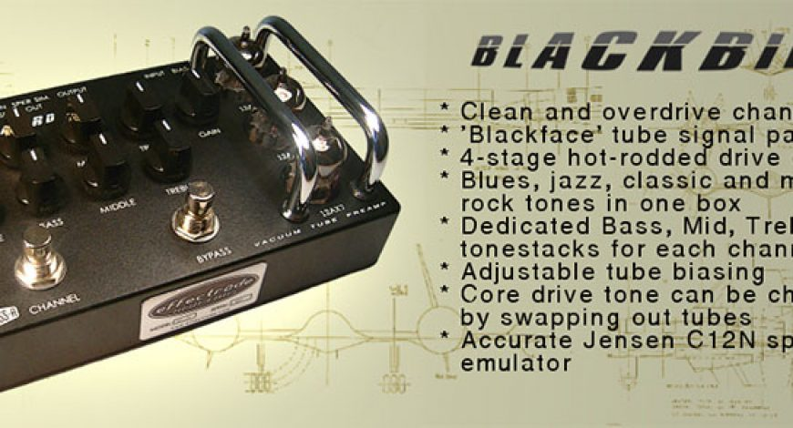 10_blackbird11