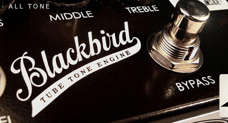11_blackbird_slider2