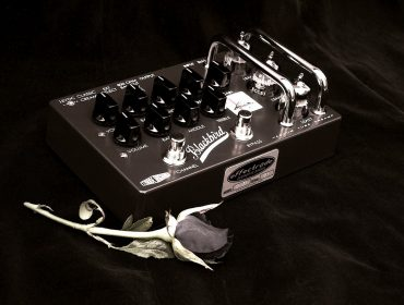 Blackbird pedal and rose